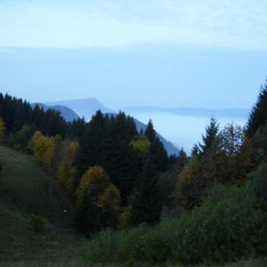 Paysages d'octobre 2010